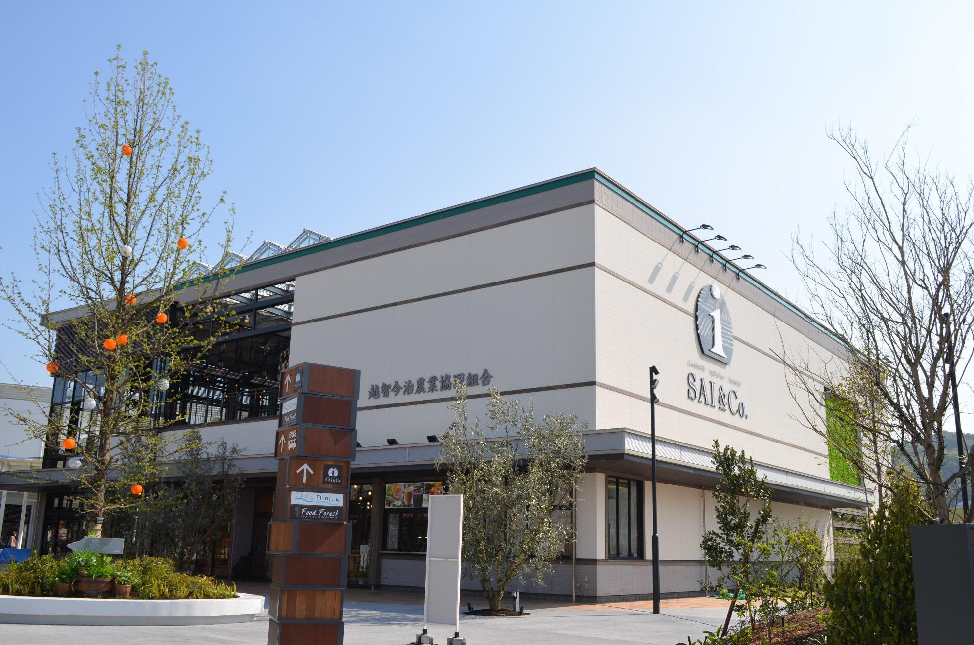 彩菜サイコ― 直売の写真