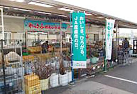 やっさふれあい市場 本郷店の写真