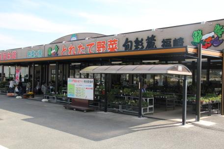 旬彩蔵 福崎の写真