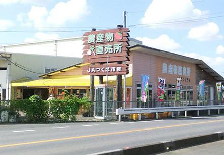 JAつくば市 桜農産物直売所の写真