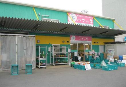「ハマッ子」直売所 本郷店の写真
