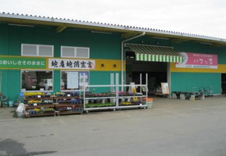 「ハマッ子」直売所 瀬谷店の写真
