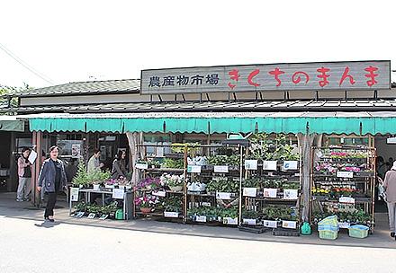 きくちのまんま菊陽店の写真