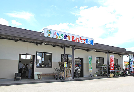 よかよかうまか生産物直売所とれたて市場益城店の写真