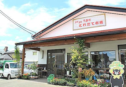 よかよかうまか生産物直売所とれたて市場花立店の写真