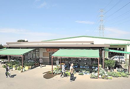 サンサンうきっ子下北店の写真