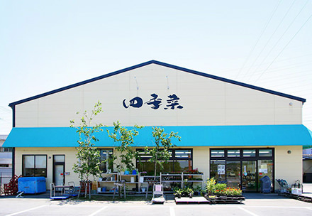 四季菜 内部店の写真
