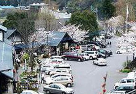 木の花ガルテン大山店