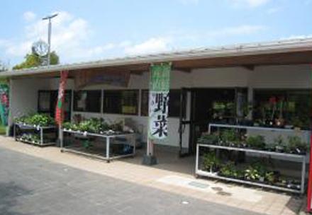 大分農業文化公園 ふれあい市場の写真