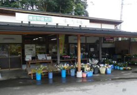 風の郷市場の写真