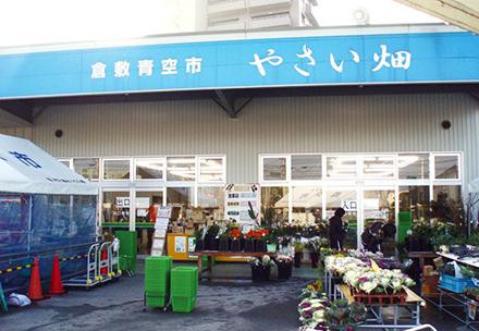 倉敷青空市「やさい畑」の写真