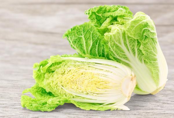 雪中野菜(ハクサイ)