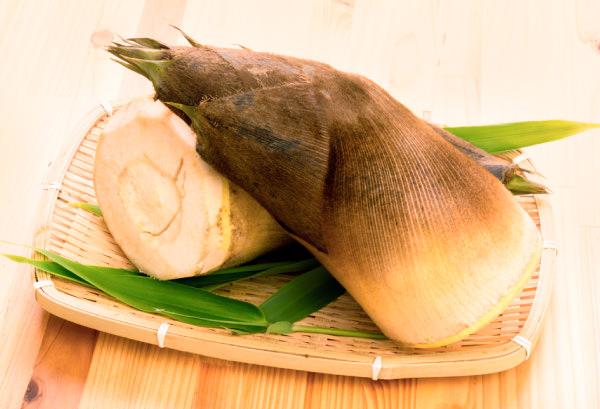 タケノコ(筍)