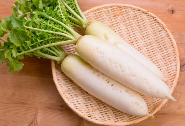 雪中野菜(ダイコン)