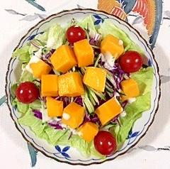 レタス 、紫キャベツ、胡瓜、マンゴーのサラダ