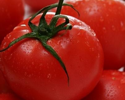 長生(ながいき)トマト